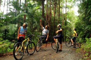 mountain-bike-tours-byron-bay