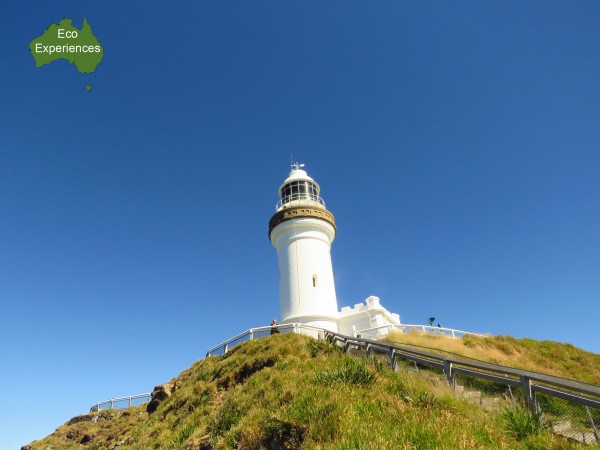 Top 10 nature activities for kids in Byron